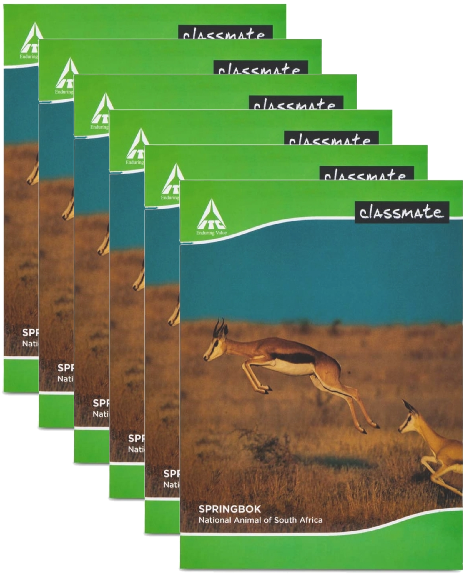 Classmate Hindi Notebook Soft Cover Single Line 120 Pages 24X18 CM Pack of 6