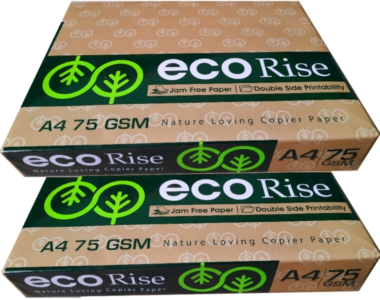 Eco Rise Printing Copy A4 Size JK Paper Eco Tree Friendly 75 GSM 500 Sheet Pack of 2